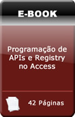 Programa��o de APIs e Registry no Access